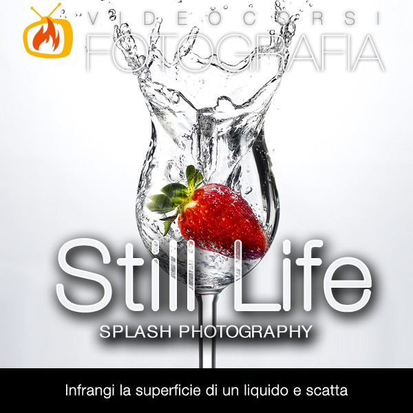 Fotografia Still life – vol. 4