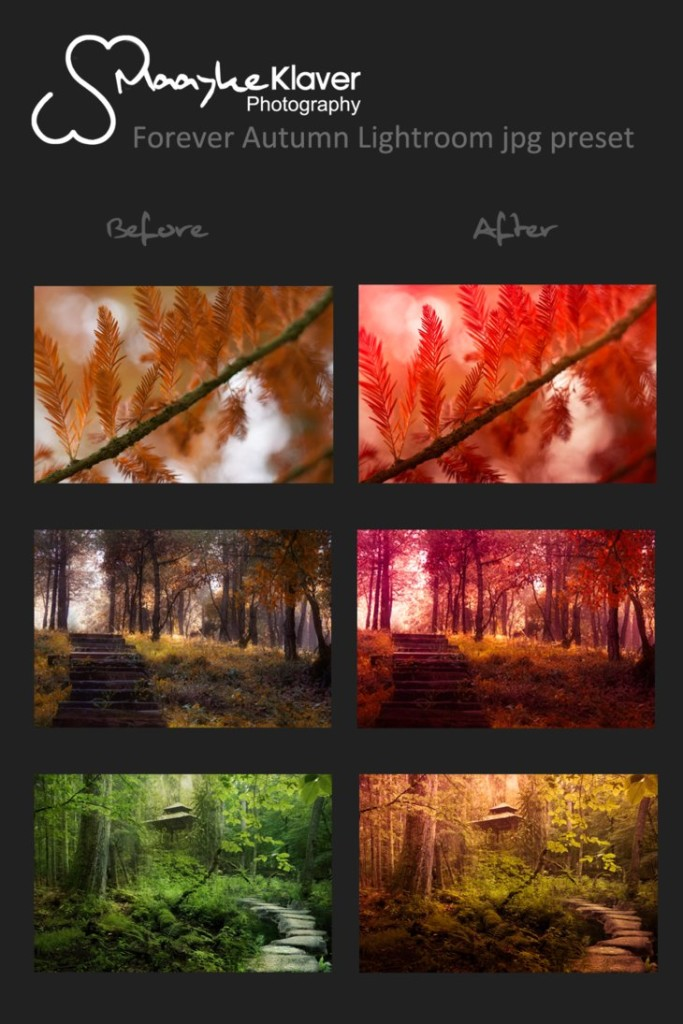 forever_autumn_lightroom_jpg_preset_by_grasmaayer-d4gyhba