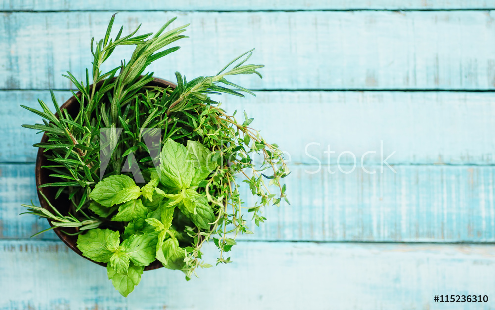 greenery adobe stock piante aromatiche