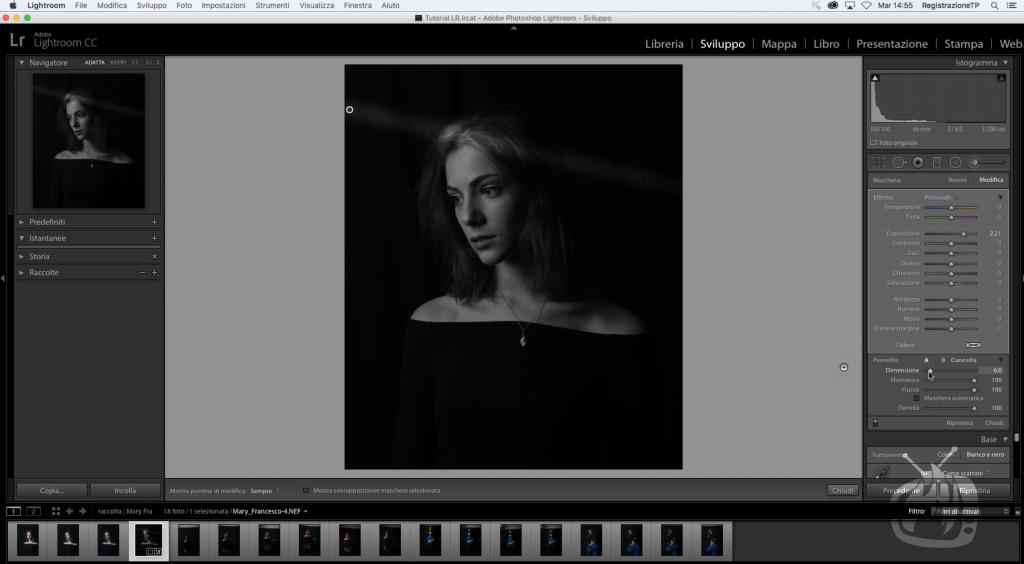 lightroom noir